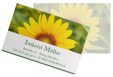 "Visitenkarten ""Sun-Power"" dunkelgrün"