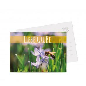 "Grußkarten ""Lavendel"" gelb"