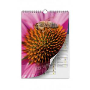 Trachtkalender Sonnenhut - Deckblatt