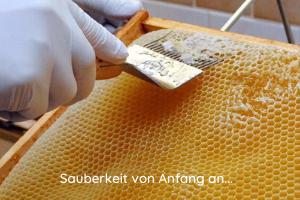 Entdeckeln der Honigwaben mit der Honiggabel