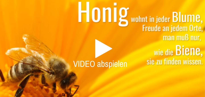 TOPP-Druckwerkstatt-Video